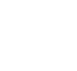 Top Kart USA Team Icon